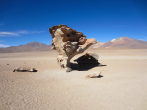 Stone tree Rock formation in Bolivia